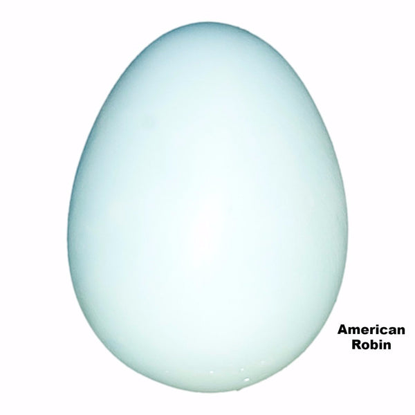 Replica American Robin Egg (29mm)