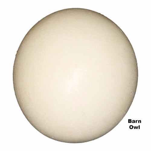 Replica Barn Owl Egg (42mm)