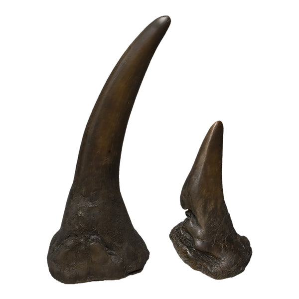 Replica White Rhinoceros Horns (Pair)