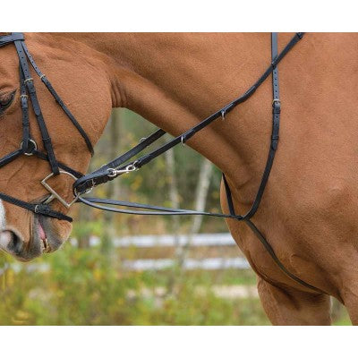 RED BARN German Martingale