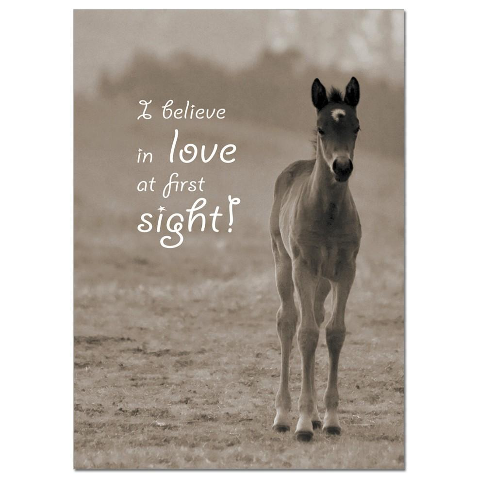 I believe in Love at First Sight greeting card