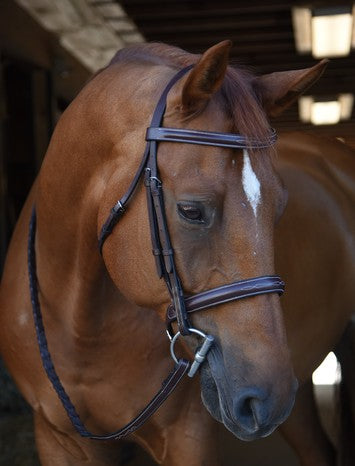 Black Oak Poppy Bridle with Reins