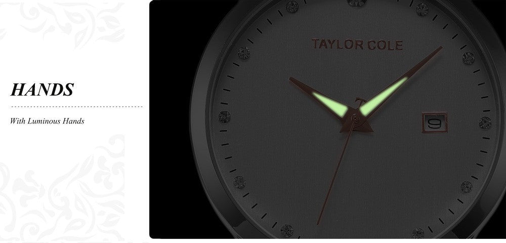 Taylor Cole Calendar Display Relogio Luminous Stainless Steel Bracelet Strap Quartz Wrist Women Crystal Dress Casual Watch/TC019