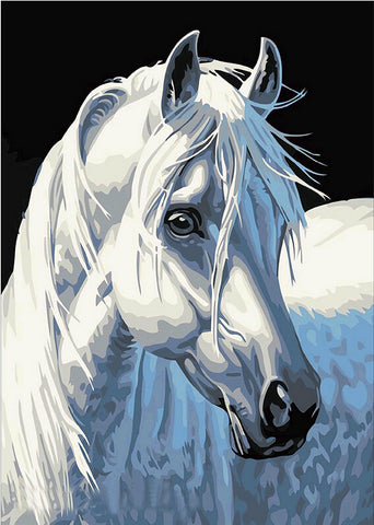 Frameless Pictures DIY Painting By Numbers Hand Painted Canvas White Horse