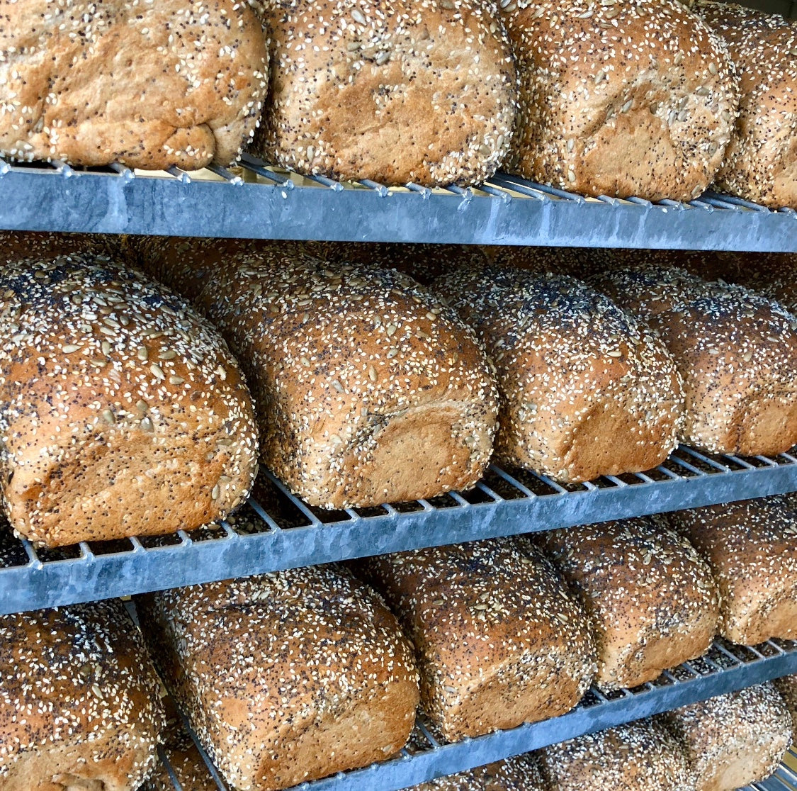 5 Benefits of Whole Wheat Bread, Big Sky Bread Company Birmingham Alabama