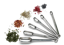 Endurance Spice Spoons (Set of 6)