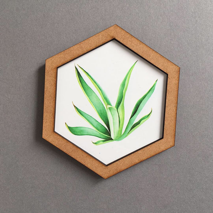 Hexagon wall art tile- Tillandsia Air plant - Fred And Bo