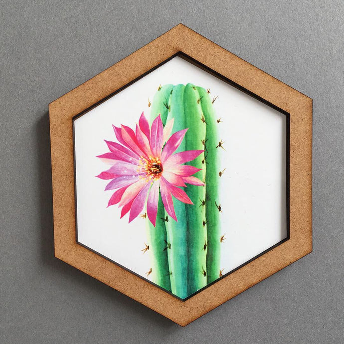 Hexagon wall art tile- cactus flower - Fred And Bo