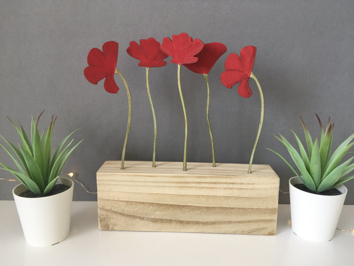 Poppy Flowers Window Box - Fred And Bo