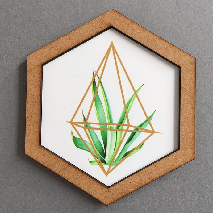 Hexagon wall art tile- geometric Tillandsia - Fred And Bo