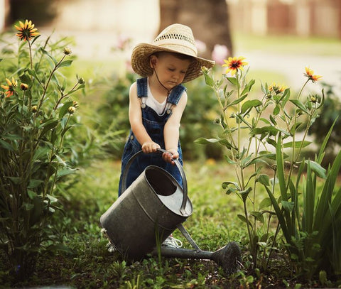 Toddler with watering bucket in garden