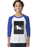 Magnificent Lion YOUTHS' 3/4 SLEEVED RAGLAN