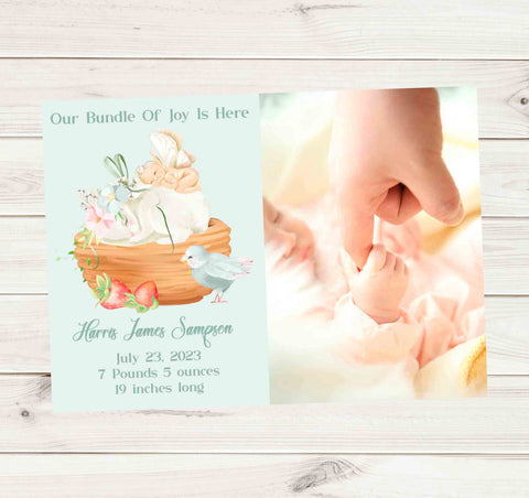 Our Bundle of Joy Is Here Fairy Bunny Bird Baby Boy Photo Birth Announcement