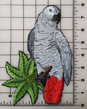 "African Grey Parrot Bird Embroidered Patch  8"" x 5.5"""