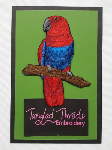 Eclectus Parrot Female Embroidered Patch
