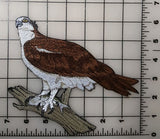 "Osprey With Fish, River Hawk, Fish Eagle, Sea Hawk Embroidered Patch 7""x 6.2"""