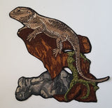 Lizard Bearded Dragon Reptile 5.8 x 5.5
