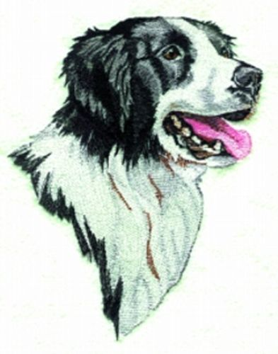 Border Collie Embroidered Patch FREE USA SHIPPING