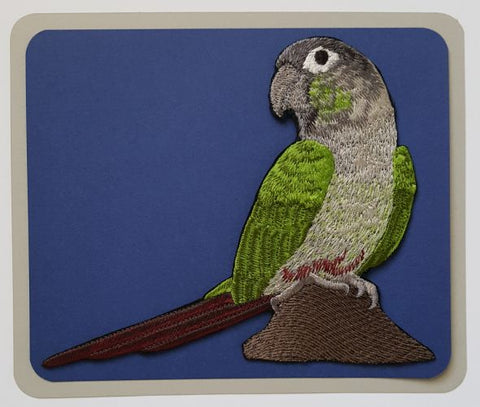 Green Cheek Conure, Parrot Bird Embroidered Patch 2 sizes