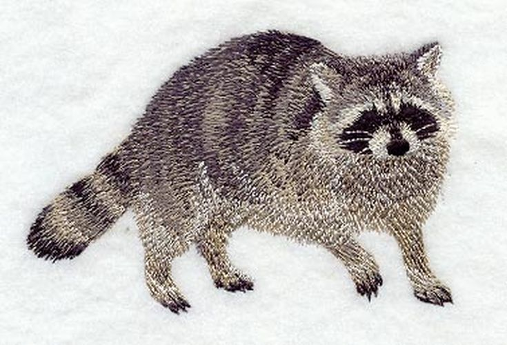 Raccoon Embroidered Patch