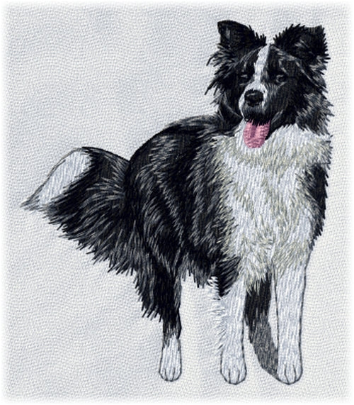 Border Collie Embroidered Patch (3.7 Inches Tall)
