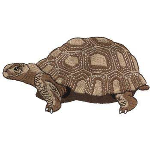 "Desert Tortoise Turtle Embroidered Patch 5"" x 2.6"" Free USA Shipping"