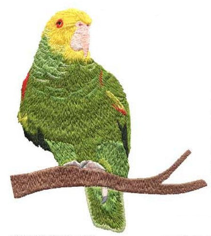 Double Yellow Head Amazon Parrot Embroidered Patch