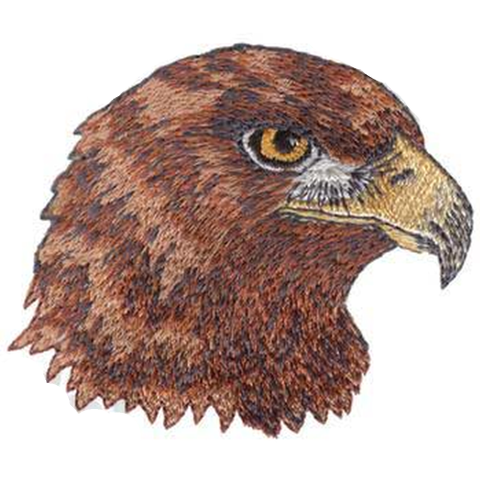 "Golden Eagles Embroidered Patch 3"" x 2.5"" Free USA Shipping"
