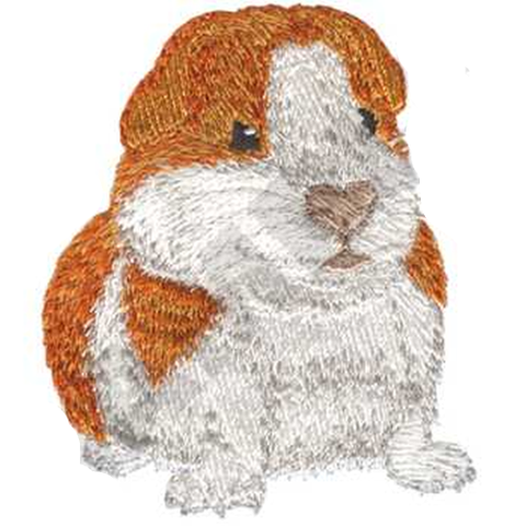 "Guinea Pig Embroidered Patch 2.5"" x 3"" Free USA Shipping"