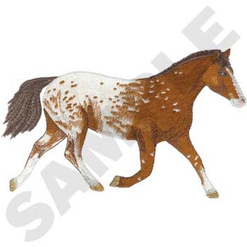 "Appaloosa Horse (107) Embroidered Patch Approx Size 8"" x 5"" Free USA Shipping"