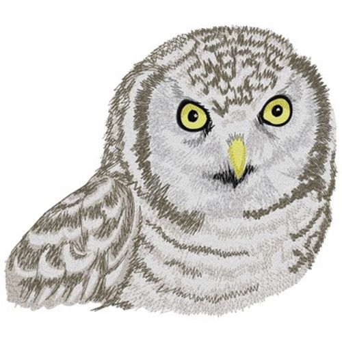 "Hawk Owl, Birds of Prey, Embroidered Patch 7""x 6.2"""
