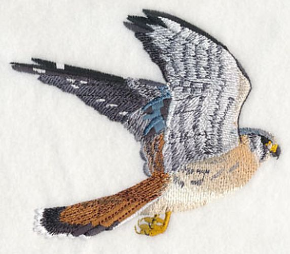 American Kestrel Falcon, Flying Embroidered Patch Available in 2 sizes