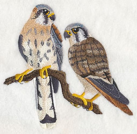 American Kestrel Falcons Pair Embroidered Patch