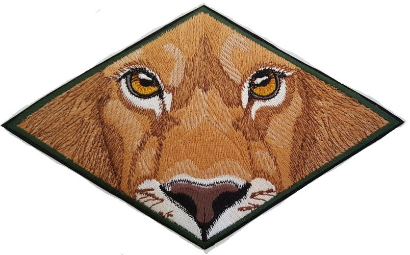 Lion Eyes Embroidered Patch 8.5 x 5.2 FREE USA SHIPPING