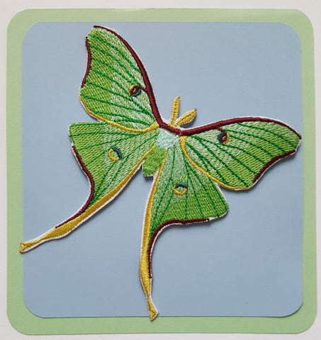 "Luna Moth Butterfly Caterpillar Bug Embroidered Patch 3.8"" x 3.8"" FREE USA SHIPPING"