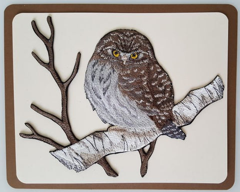 Northern Pygmy Owl, Birds of Prey, Embroidered Patch