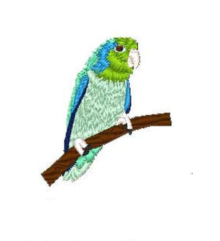 "Pacific Parrotlet, Bird, Parrot Embroidered Patch 2.1"" x 2.5"""
