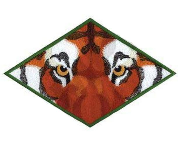 Tiger Eyes Embroidered Patch 9 x 5.7