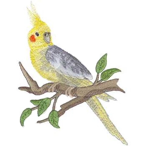 "Cockatiel Bird Embroidered Patch 4.8"" x 7"" Free USA Shipping"