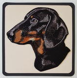 Dachshund Dog  Embroidered Patch