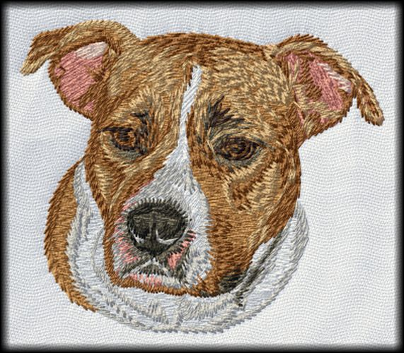 "Pitbull American Staffordshire Staffy AmStaffy Embroidered Patch 3"" x 3"""