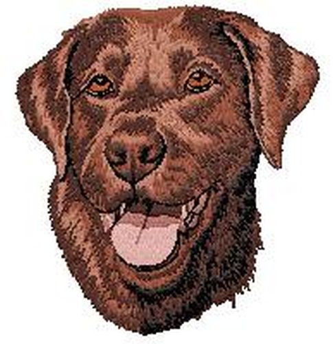Labrador Retriever Dog, (Chocolate) Embroidered Patch 3.3""