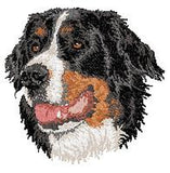 Bernese Mountain Dog Embroidered Patch (3 Inches Tall)