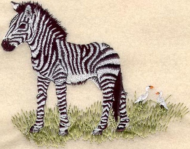 Zebra Baby Embroidered Patch