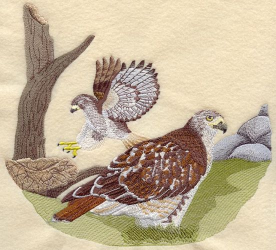 "Red-Tailed Hawk Scene Embroidered Patch 9.9"" x  9.2"""