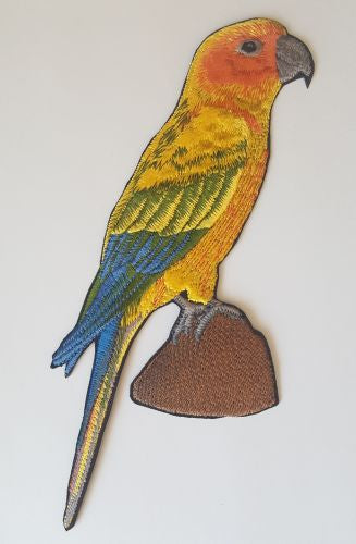 Sun Conure Embroidered Patch Free USA Shipping