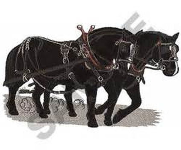 "Percheron Team Embroidered Patch 8.4"" x 5"""
