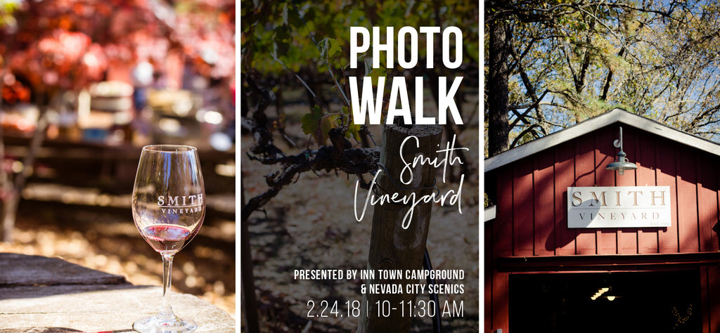 Smith Vineyard Photo Walk