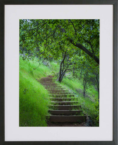 Yuba River Framed Print - The Stairway
