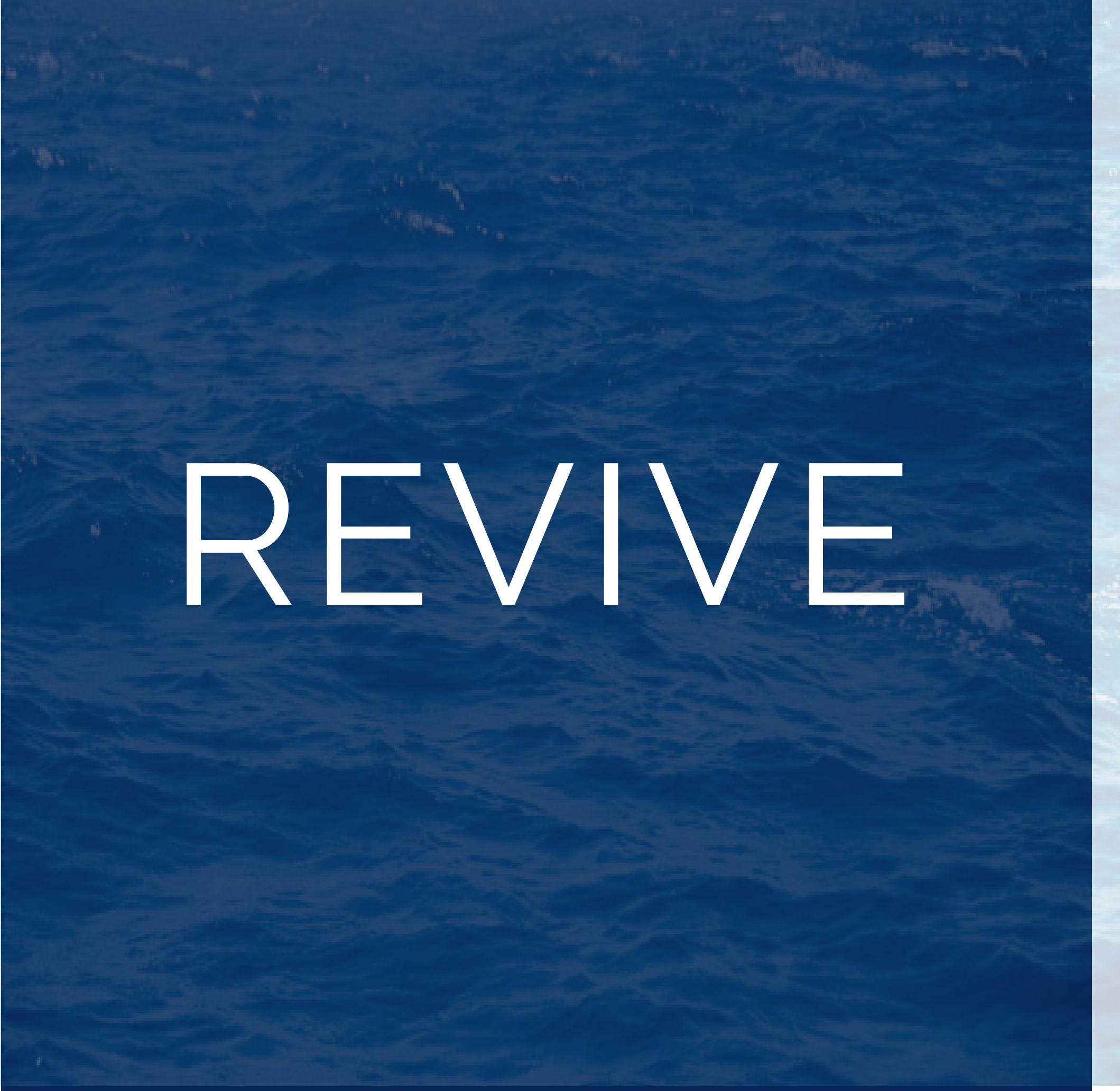 An icon representing Revive